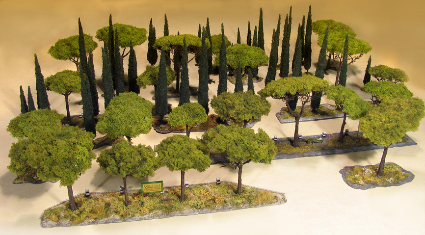 arbres pour les r seaux m diterran en pins et cypr s. Black Bedroom Furniture Sets. Home Design Ideas
